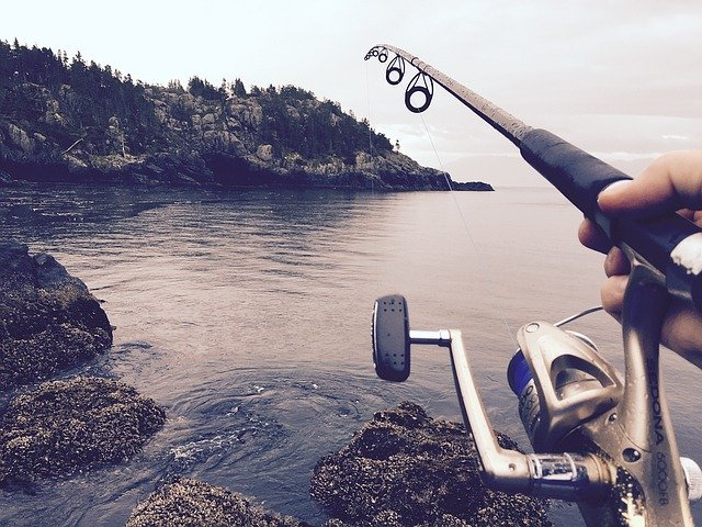 How To Select The Best Fishing Rod?