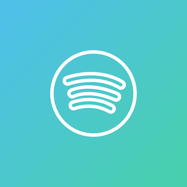 Setting Up A Profile On Spotify From The Start